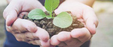 Aplique ações sustentáveis no seu negócio