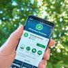 WhatsApp Business: como utilizar no seu negócio